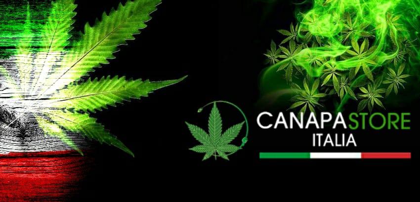 Marijuana shop online